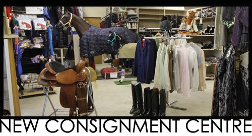 Consignment | Gloverequine com | Items of quality create